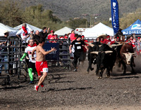 Running with the bulls Cave Creek AZ FEB 8-9 2014